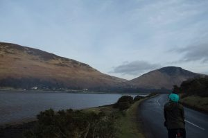 Lochranza, Isle of Arran - sheepwrecked?